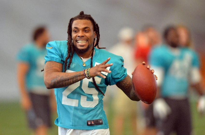 louis-delmas-nfl-miami-dolphins-training-camp-850x560